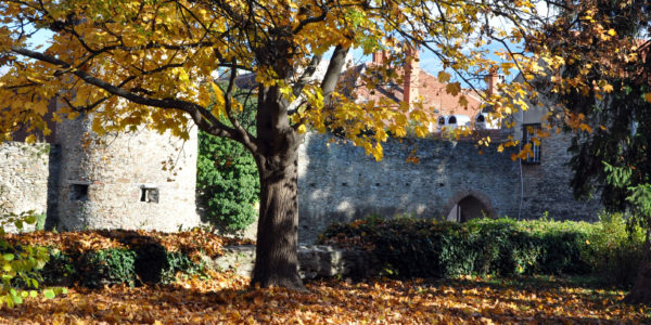 Nyárutó - Őszi színkavalkád
